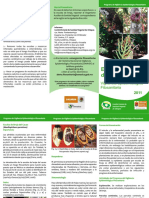 215369636-Trip-EscobadeBruja-Chiapas.pdf