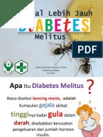 Penyuluhan Diabetes Melitus Prolanis PKM Bades