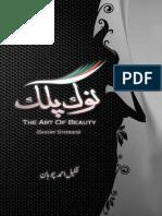 Nok Palak the Art of Beauty - Urdu Short Stories -  By Shakeel Ahmed Chohan