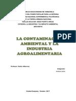 Trabajo Contaminacion Ambiental