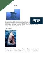 5100 Gambar Hewan Yang Hidup Di Air Dan Penjelasannya HD Terbaru