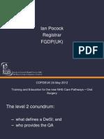 dwsi.pdf