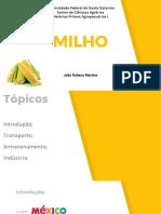 Seminário Milho