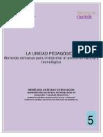 Unidad Pedag 5.pdf
