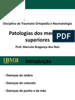 IBMR_patologias_dos_MMSS_2011_2