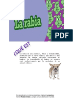 239871407-Rabia.pdf