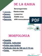 10269208 Virus de La Rabia