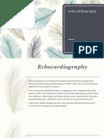8847_echocardiography