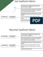 Resumen Auditores lideres