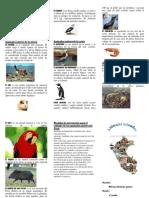 154780062-Animales-oriundos-del-Peru.docx