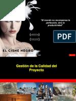 Gestion de La Calidad - Pmbok 5ed-V5