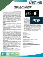 Pruebas-PVT-de-Gas-y-Petróleo.pdf