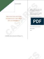0. Libro 1 PROCESO DE GESTIÓN DE RIESGOS Y SEGUROS.pdf