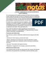 El Calcio (CA) Funciones y Beneficios en Las Aves de Postura de Huevo Comercial