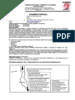 ExParcial&Sol DOH v1Sem2 2015 13Oct CPyM1