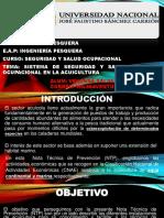 EXPOSICION DE SSST.pptx