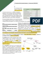 Clase 2. Organizacion del genoma humano y cromosomas.pdf
