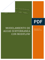 INFORME DE modflow