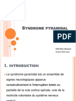 N Syndrome Pyramidal 2015