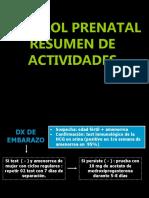 Control Prenatal22