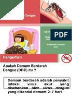 Penyuluhan DBD 2015
