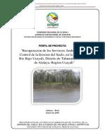 Proyecto Cuenca Rio Bajo Ucayali