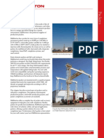 06_Packers.pdf