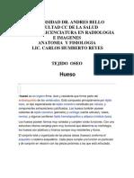 HUESO,TEJIDO+OSEO+ANATOMIA.doc2002610171.doc[1]