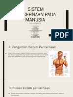 Ppt Sistem Pencernaan Manusia