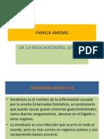 FAMILIA AMEBAS.pdf