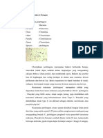Bakteri Patogen Dan Media