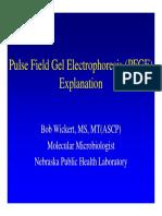 Pulse Field Gel