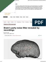 Brain Noise