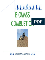 Biomass Combustion[1]