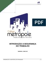 Introducao a Eng. Seg. Metropoli.pdf