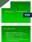 CARGUIO Y TRANSPORTE