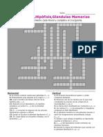 crucigrama-1 (1).pdf