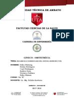 DESARROLLO COMPLETO.docx