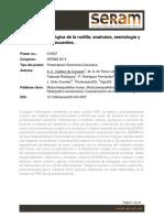 Valoración Radiológica de La Rodilla