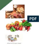 alimentos de origen animal vegetal y mineral.docx