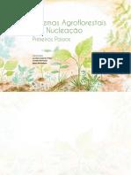 CARTILHA_Sintemas Agroflorestais por Nucleação.pdf
