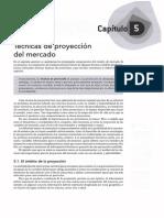05 - Tecnicas de Proyeccion Del Mercado