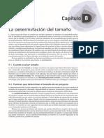 08 - La Determinacion del Tamaño.pdf