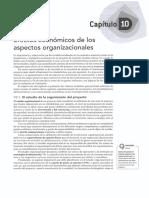 10 - Efectos Economicos de Los Aspectos Organizacionales