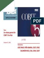 COBIT v 5.0  Riesgos