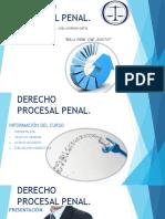 Derecho Procesal Penal. Código Nacional