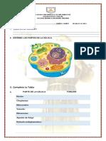examen de ciencias 4.docx