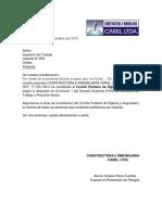 Carta Constitucion Cphs