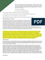 Marcas y Branding.docx