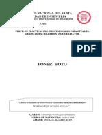 Perfil Para Practicas Modelo 3